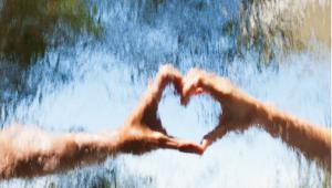 Inteligência Emocional: Quando razão e emoção caminham juntas