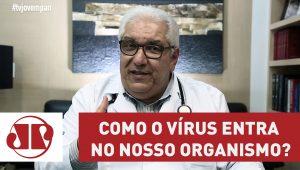 Como o vírus entra no nosso organismo?