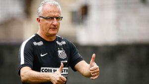 Ricardo Saibun/SantosFC/Divulgação