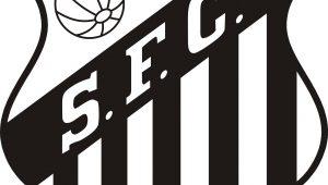 Santos 1 x 0 Atlético-PR – Bruno Henrique