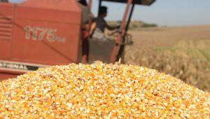 Cenário de 2018 para o agronegócio é mais positivo que 2017