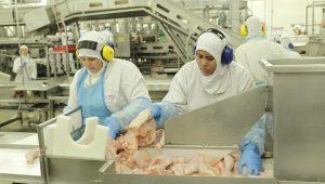 Carne Fraca: até hoje consumidor brasileiro não foi devidamente esclarecido