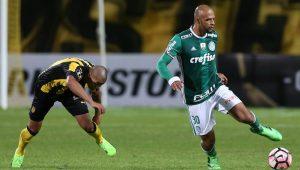 Cesar Greco / Palmeiras