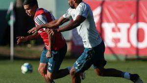 Twitter-SE Palmeiras
