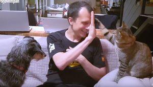 Pet na Pan – Soluções baratas para a caixa de areia do gato