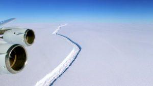 Com tanto lugar para ir, por que o iceberg está vindo para o RJ?