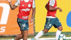 Divulgação / Cesar Greco / Agência Palmeiras