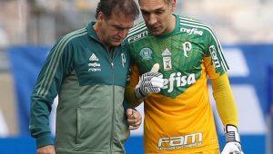 César Greco / Divulgação / Agência Palmeiras