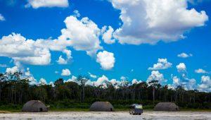 STF nega indenização ao MT por desapropriação de terras no Parque do Xingu
