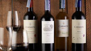 Enóloga da Viña Carmen explica toda a sua experiência até a vinícola