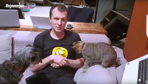Relacionamento entre cão e gato; entenda