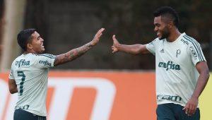 Futebol Campeonato Brasileiro Palmeiras Dudu Borja