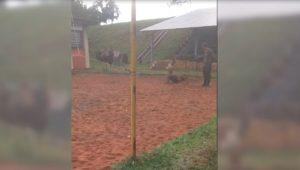 Imagens obtidas pelo MPF mostram agressões contra soldados do Exército em Goiás