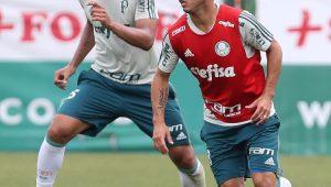 Futebol Palmeiras Alejandro Guerra