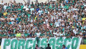 Futebol Campeonato Brasileiro Torcida Palmeiras