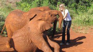 "Gisele Bündchen critica Trump por liberar caça de elefantes: ""nada justifica"""