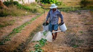 Presidente da CNA faz forte defesa do agronegócio e do livre mercado